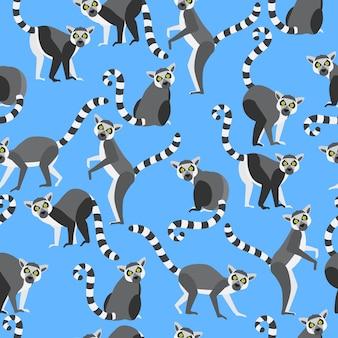 Ring tailed lemur nahtlose muster