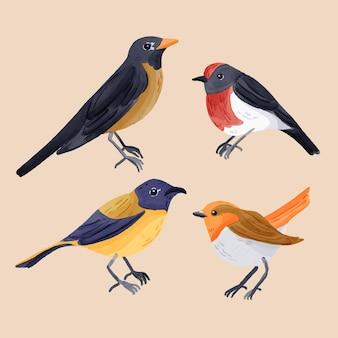 Robin-pack im aquarell-stil