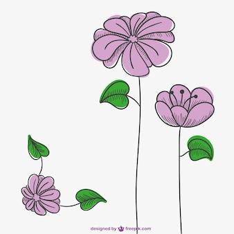 Rosa blüten zeichnung