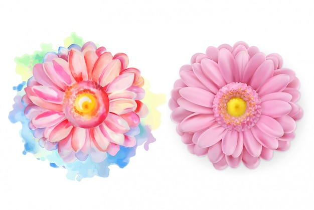 Rosa blume des frühlinges, gänseblümchen, chrysantheme, kamillenblüte, aquarell und realistisches s