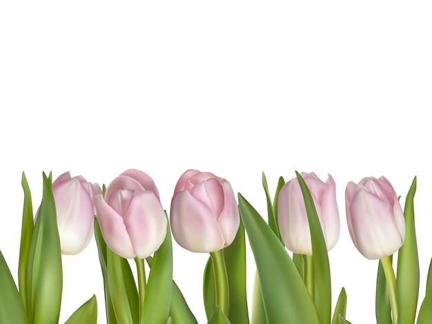 Rosa blumen für grenze lokalisiert auf weißem hintergrund.