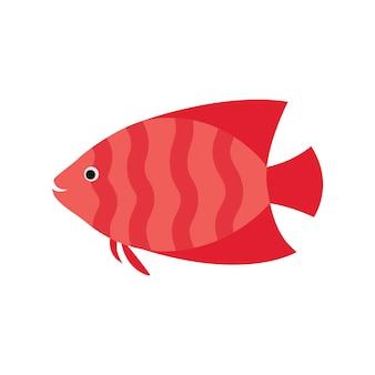 Rosa fisch. gestreiftes aquarium exotische fische tropische meeresfische.