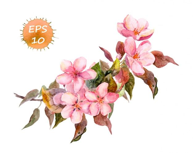 Rosa kirschblüte, zweig der pflaume, pfirsich, kirschblüte mit frühlingsblumen.