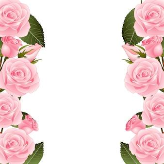 Rosa rosen-blumen-rahmen-grenze