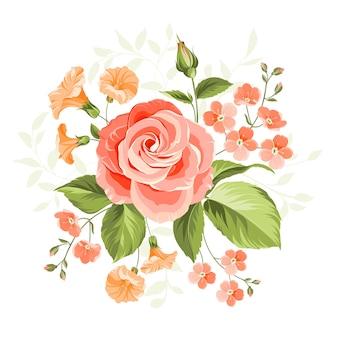 Rosa schöne rosenillustration