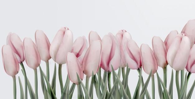 Rosa tulpengeburtstagseinladungskarte