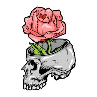 Rose im schädel vektor