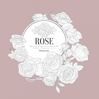 Rose themed vintage sketch