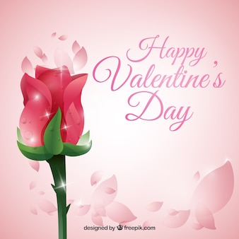 Rose valentinstag-hintergrund