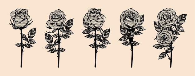 Rosen-vektorspitze, die eigenhändig zeichnet.
