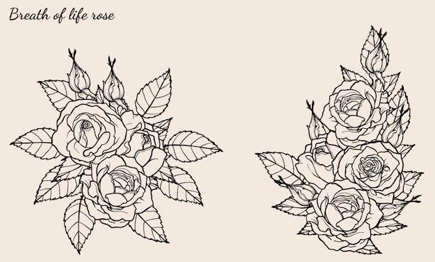 Rosen-verzierungsvektor, der eigenhändig gezeichnet wird