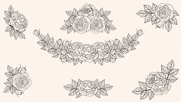 Rosenverzierungsvektor eigenhändig zeichnen