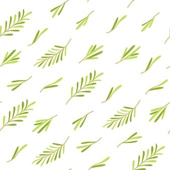 Rosmarin pflanzen nahtlose muster