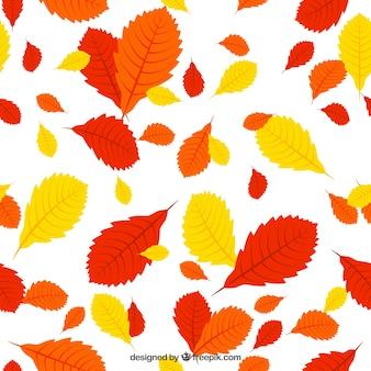Rot, orange und gelbe blätter patern