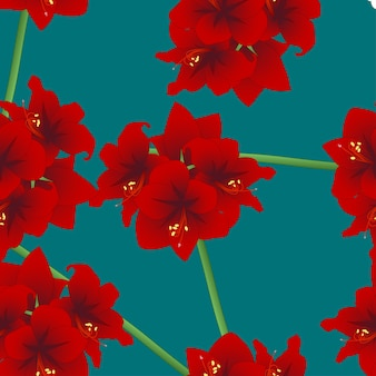 Rote amaryllis auf teal indigo hintergrund. weihnachtstag