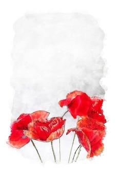Rote blumen auf weißem hintergrund aquarell