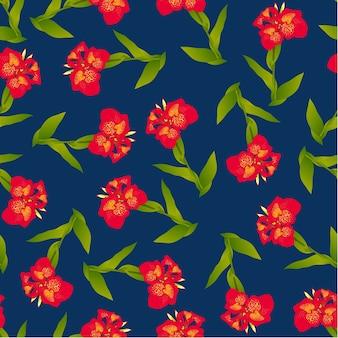 Rote canna lilie auf indigo blue background