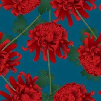 Rote chrysantheme-blume auf indigo blue background