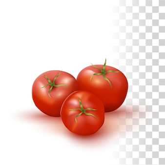 Rote frische tomaten
