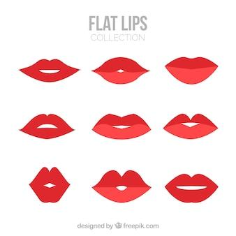 Rote lippensammlung mit flachem design