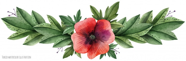 Rote mohnblumengala-vignette