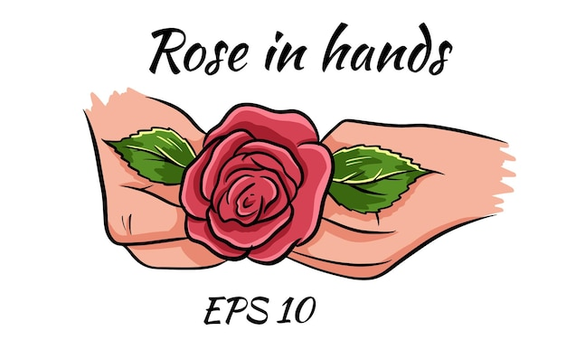 Rote rose in weiblichen händen. romantisch. vektorillustration. isolierte zeichnung auf weißem hintergrund.