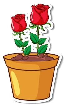 Rote rosen in einem topfaufkleber