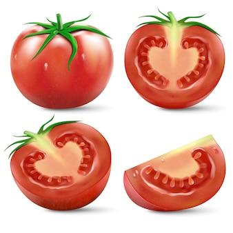 Rote tomate und halbe tomaten und scheibe mit realistischem vektor der grünen blätter