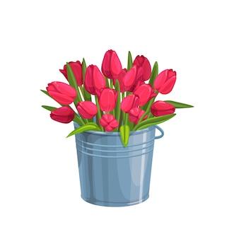 Rote tulpen. gartenblumen in einem metalleimer.