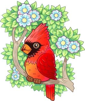 Roter kardinal des karikaturvogels