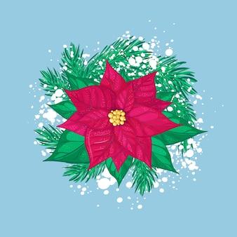 Roter weihnachtsstern mit weihnachtsbaumzweigen und weißem schnee. isolierte feiertagszusammensetzung.