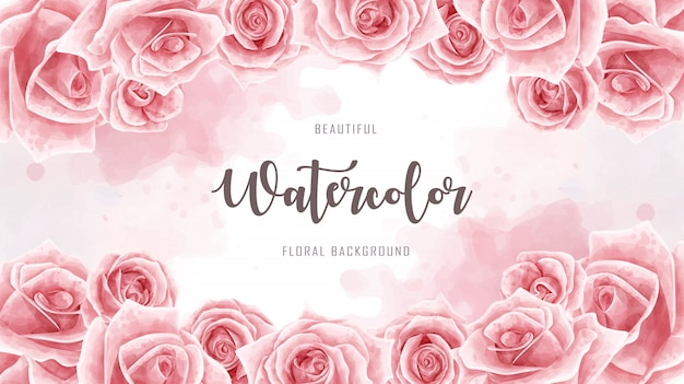 Rotes aquarell rose flower background