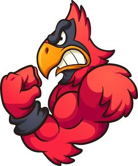 Rotes kardinal-maskottchen