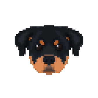 Rottweiler kopf im pixel-art-stil.
