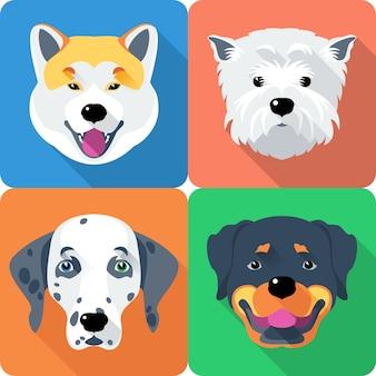 Rottweiler und west highland white terrier rasse gesicht symbol flaches design
