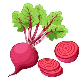 Rüben im hintergrund. rote beete ganz, geschnitten, in scheiben geschnitten. set frische rüben in verschiedenen formen. symbol . website-seite und design-illustration für mobile apps