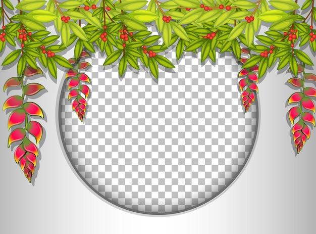 Runder rahmen transparent mit tropischer blattschablone