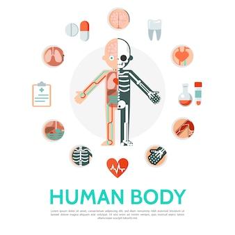 Rundes konzept der flachen menschlichen körperanatomie