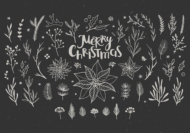 Rustikale dekorative blumenelemente für weihnachten botanische vektorelemente für den winter