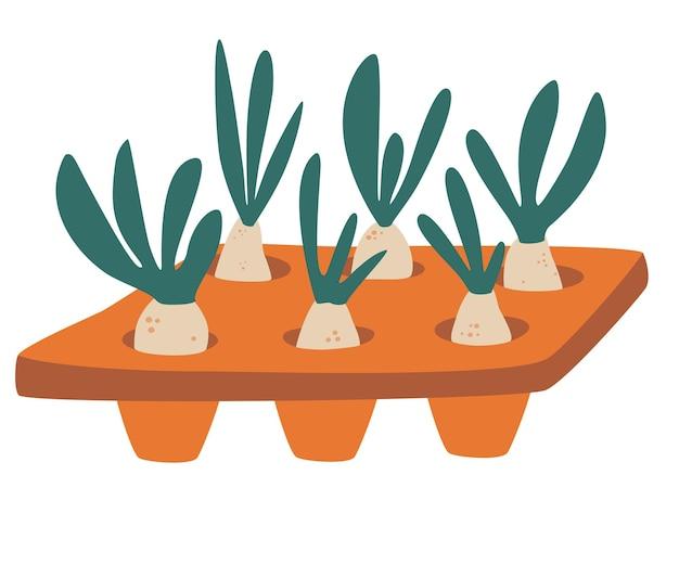 Sämlinge in der schale. illustration mit einem setzling-tablett gefüllt mit setzlingen. inländische orangerie und pflegekonzept. hobbygärtnern. vektorillustration im cartoon-stil.