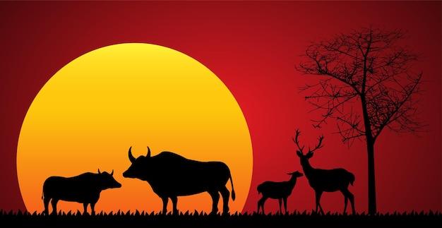 Safari tierwelt afrika sonnenuntergang tiere isoliert vektor
