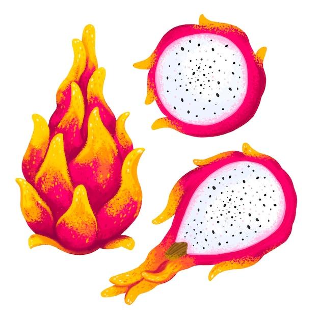 Saftige illustration einer exotischen pitahaya-frucht in drei winkeln, geschnittenes pitahaya, drachenherz