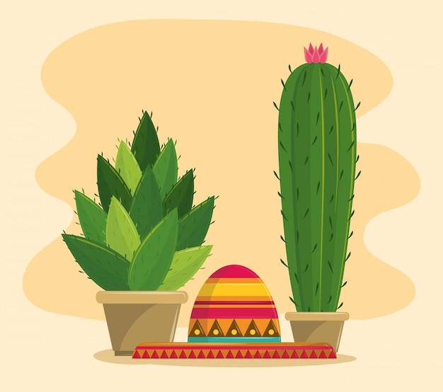Saftiger topf mexikos und des kaktus