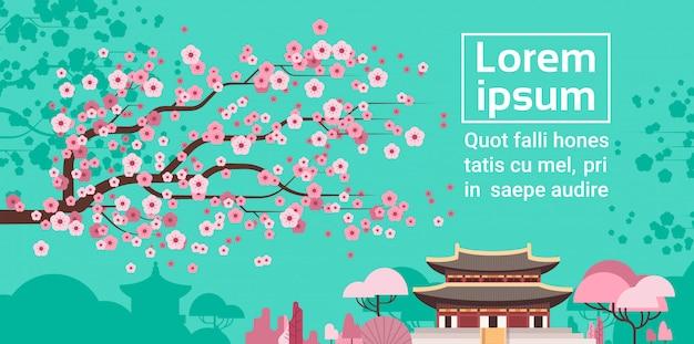 Sakura blossom over korea-tempel oder palast-landschaftssüdkoreanische berühmte markstein-ansicht