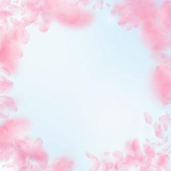 Sakura blütenblätter fallen herunter. romantische rosa blumenvignette. fliegende blütenblätter auf blauem himmel quadratischem hintergrund