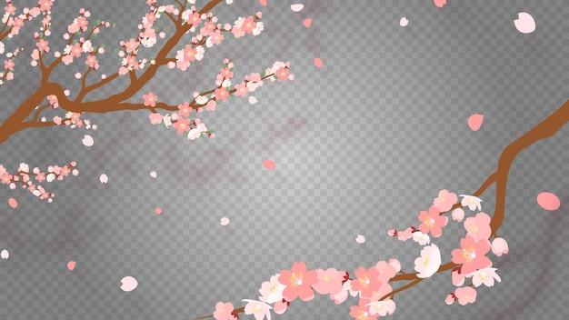 Sakura-zweig mit fallenden blütenblättern vektorillustration. rosa kirschblüte