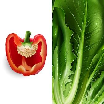 Salat- und tomatenillustration