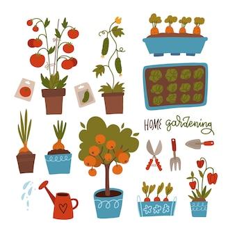 Samen und setzlinge setzen keimung von sprossen werkzeugtöpfe und erde zum anpflanzen der sammlung