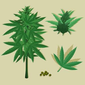 Sammlung botanischer cannabisblätter