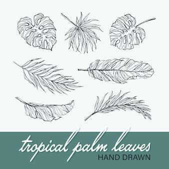 Sammlung der schwarzen isolierten palmen- und monstera-blätter, tropischer botanischer hand gezeichneter satz.